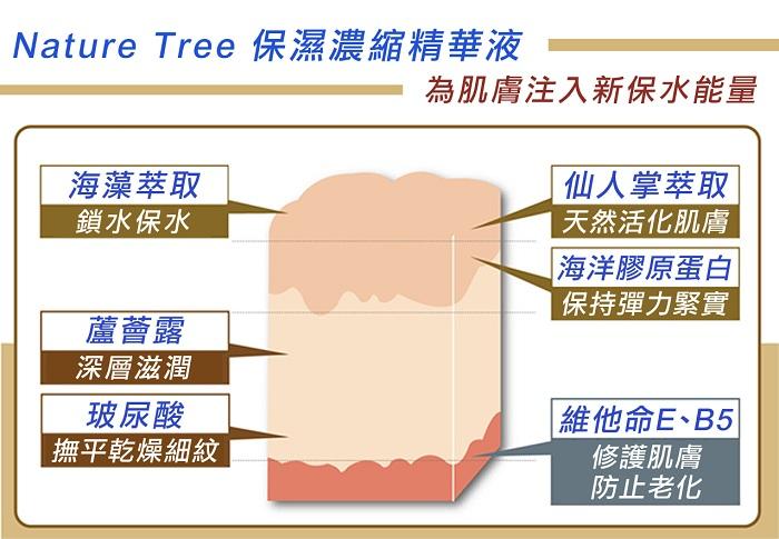 nature%20tree%20%E4%BF%9D%E6%BF%95%E6%A9