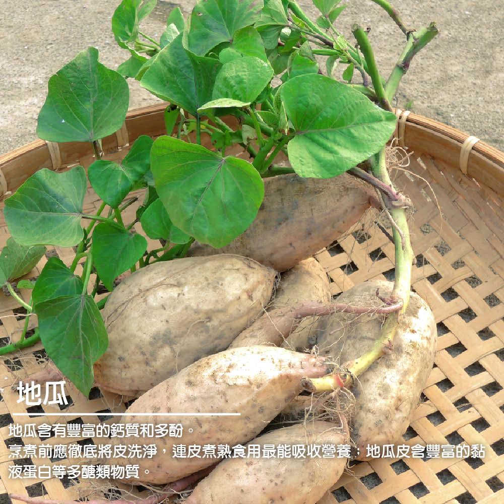 蔥媽媽 素食地瓜抓餅(全素) 採用新鮮食料